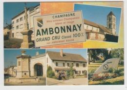AB733 - AMBONNAY - Champagne Grand Cru - Multivues - France