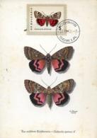 48650  Bulgaria Maximum 1962 Butterfly  Schmetterlinge,  Papillon - Farfalle