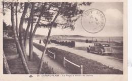 CARNAC-PLAGE La Plage à Travers Les Sapins - Carnac