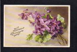 Fêtes,Voeux / Jolie Carte Fantaisie / Heureux Anniversaire ( Violettes ) - Birthday