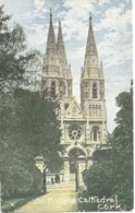 ST. FINBARR'S  CATHEDRAL - CORK - Cork