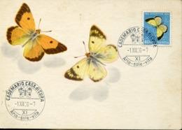 48656 Switzerland  Maximum 1950 Butterfly  Schmetterlinge,  Papillon   Pro Juventute 1950 - Farfalle