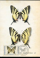 48658 Ceskoslovensko   Maximum 1966 Butterfly  Schmetterlinge,  Papillon - Farfalle