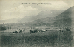 73  SAINT PIERRE D'ALBIGNY / Albigny Paturages Et Le Parmelan / - Saint Pierre D'Albigny