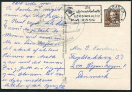 1982 Denmark MS DANIA ANGLIA Ship Postcard. Esbjerg / Harwich - Danimarca