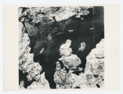 Originele Foto: Bismarck In De Dobric Fjord 1941 - Schiffe