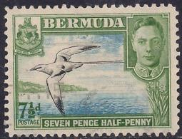 Bermuda 1938 - 52 KGV1 7 1/2d Tropicbird Used SG 114b ( K173 ) - Bermuda