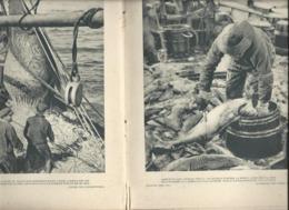 Paul Valéry - Mer Marines Marins Livre De 100 Pages Textes Et Gravures Edit Firmin Didot 1930 - Bretagne