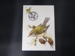 "BELG.1991 2424 FDC Mcard: Buzin ""  Roitelet,Bruant Des Roseaux,Grive Musicienne / Goudhaantje  "" - 1985-.. Birds (Buzin)"