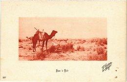 CPA 337 Dans Le Bled. Ed. Geiser ALGERIE (69732) - Algérie