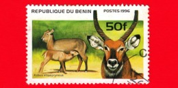 Nuovo Oblit. - BENIN - 1996 - Animali - Cobo - Antilope D'acqua - Kobus Ellipsiprymmus - 50 - Benin – Dahomey (1960-...)