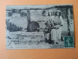 Scènes Et Types Le Broyage Des Olives - Postcards