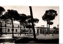 29.-TORDESILLAS (Valladolid). Parador Nacional De Turismo. Deposito Legal VA N°228 - 1958. Margara. En Très Bon état - Valladolid