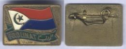 Insigne Du Front De Libération Nationale Du Tchad ( FROLINA ) - Tchad ( RARE ) - Abzeichen & Ordensbänder