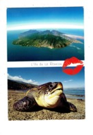 Cpm - Ile De La Réunion - Tortue De Kélonia Gros Plan - Plage Saint Leu - 425 Gelabert - 2018 - Schildpadden