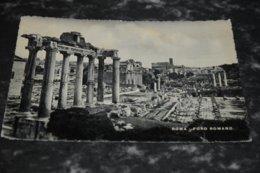 7770     ROMA, FORO ROMANO - 1950 - Roma