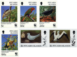 Ref. 216607 * NEW *  - PITCAIRN ISLANDS . 1996. BIRDS OF THE HENDERSON ISLAND. AVES DE LA ISLA DE HENDERSON - Sao Tome Et Principe