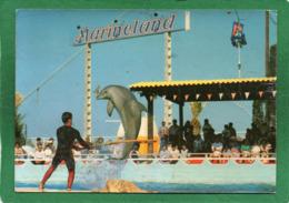 MARINELAND D ANTIBES ROUTE DE BIOT DAUPHINS  CPM 1986 Collection Marineland  VIGUIER état Trés Moyen Petit Prix - Delfini
