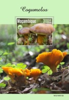 Mozambique. 2019 Mushrooms. (0512b)  OFFICIAL ISSUE - Funghi