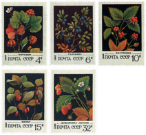 Ref. 92601 * NEW *  - SOVIET UNION . 1982. WILD FRUITS. FRUTOS SILVESTRES - 1923-1991 URSS