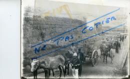 COLONIES. Convoi Militaire  Photo - Militaria