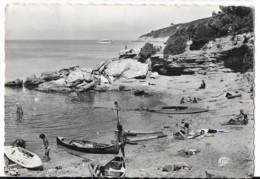 CPSM 83  Ile Du Levant - Plage Des Grottes - Naturistes - France