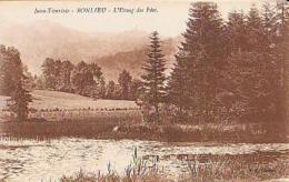 Jura        246         Bonlieu.L'étang Des Fées - France