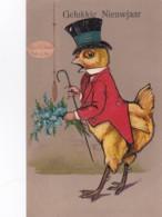 256141Gelukkig Nieuwjaar, Else Küken Hof I Trp.(poststempel 1913.(reliëf Kaart) - Nieuwjaar