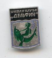 DOLPHIN Club 1970-1980s Underwater Padi Diving Plongeur Plongee Dauphin Pin Badge - Duiken