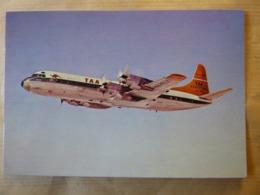 TAA / TRANS AUSTRALIAN AIRLINES    ELECTRA    VH-TLC - 1946-....: Era Moderna
