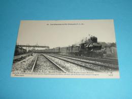 Trains Train, Les Chemins De Fer Français, Locomotives Locomotive, PLM P.L.M, Le M.71 La Malle Des Indes Calais-Brindisi - Trenes