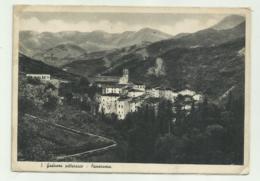 S.GODENZO PITTORESCO - PANORAMA  VIAGGIATA   FG - Firenze (Florence)