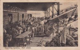 Exporting Bananas Port Limon - Costa Rica