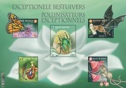 Exceptionele Bestuivers** /  Pollinisateurs Exceptionelles Belgie 2019 - Belgium