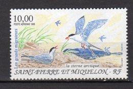 Saint-Pierre Et Miquelon Yvert N° 74 Aérien Neuf Les Grands Migrateurs. La Sterne Articque Lot 23-19 - Ungebraucht