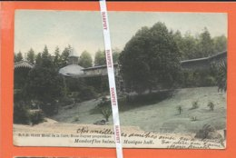 MONDORF LES BAINS  -  Musique Hall  -  D.V.D. 10.115 - Mondorf-les-Bains