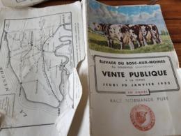 DOUDEVILLE / VENTE  PUBLIQUE RACE NORMANDE PURE 1952 - Animali