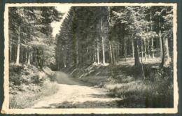 010 Epinal : Chemin Des Princes - Les Forges - Epinal