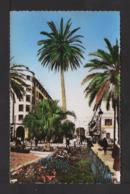 CPSM Pf . TUNISIE . TUNIS . Place De L'Indépendance . - Tunisia