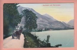 OUDE POSTKAART ZWITSERLAND - SCHWEIZ - SUISSE -     SACHSELN - PAARD- EN WAGEN - TRANSPORT - OW Obwalden