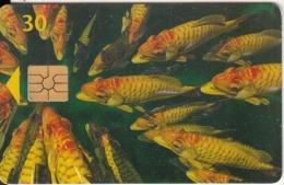 DENMARK - Fish, Chip 2, CN : 6506, Exp.date 30/06/98, Used - Danemark