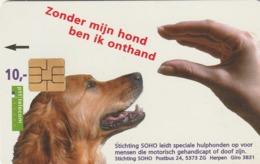 HOLANDA. Dog With Hand. 1997. 10f. CG 015-01. (086) - Perros