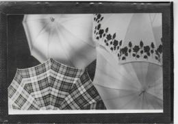 AK 0349  Schirme  - Photo-Ansichtskarte Ca. Um 1930 - Fotografie