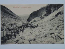 Carrara M26 Transporto Merci 1910 - Carrara