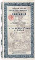 Titre Ancien - Compagnie Agricole Commerciale & Industrielle De Badikaha - Déco - Afrika