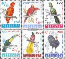Belgium 1276-1281 (complete Issue) Unmounted Mint / Never Hinged 1962 Birds - Belgium