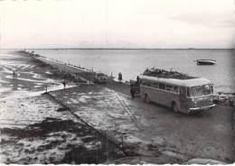 BUS & AUTOCAR - ILE DE NOIRMOUTIER : Le Gois - Beau 1er Plan AUTOCAR - CPSMdentelée Noir Blanc Grand Format  - - Buses & Coaches