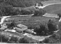 83 - Les ARCS Sur ARGENS : Domaine ( Viticole ) Des CLARETTES - CPSM Photo N/B Grand Format - Var ( Vin Vigne Vignoble ) - Les Arcs