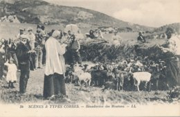 Scènes Et Types Corses (20 - Corse) Bénédiction Des Moutons - édit LL N° 34 (carte Comme Neuve) - Francia
