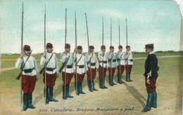 CAVALERIE - DRAGONS - MANOEUVRE A PIED - Regiments